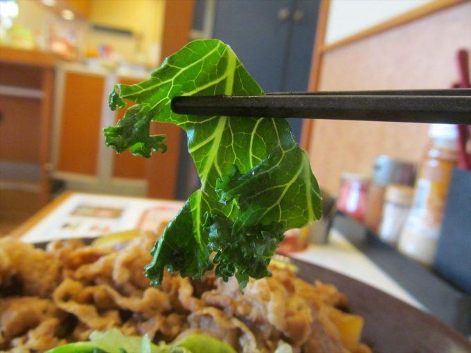 sukiya-kale-lettuce-gyudon-20200415-060