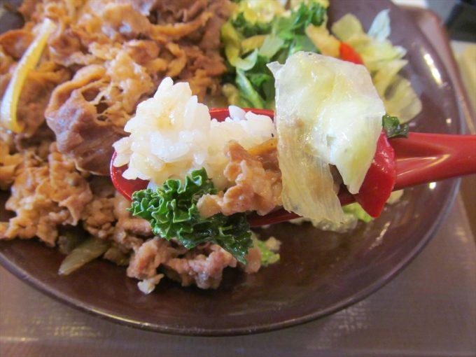 sukiya-kale-lettuce-gyudon-20200415-076
