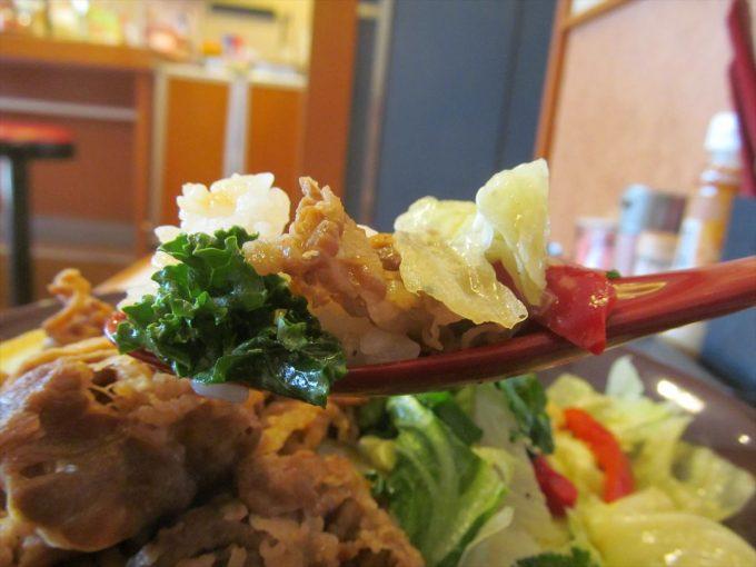 sukiya-kale-lettuce-gyudon-20200415-080