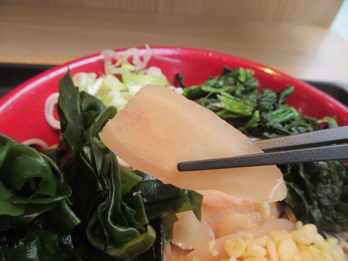fujisoba-cold-iwashita-shinshoga-soba-20200711-028