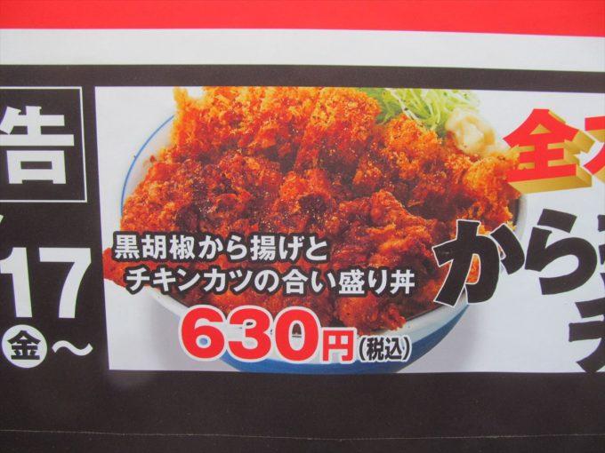 katsuya-sasamikatsu-cold-bukkake-udon-20200713-011