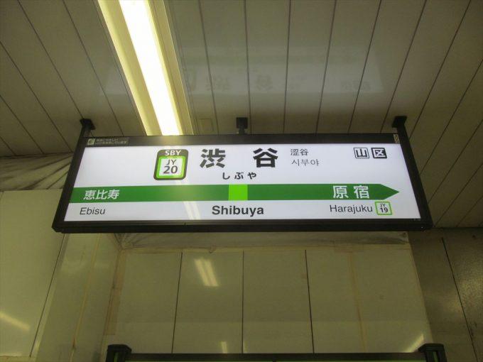 honke-shibusoba-20200909-006