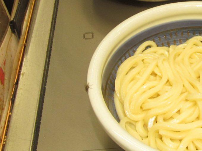 丸亀製麺ハエ_1205_20201004