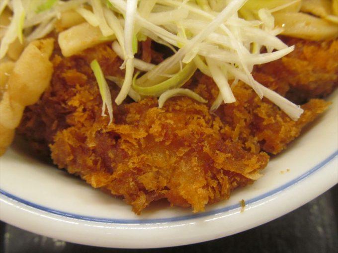 katsuya-nikuudon-chicken-cutlet-20201002-060