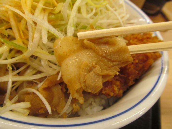 katsuya-nikuudon-chicken-cutlet-20201002-067