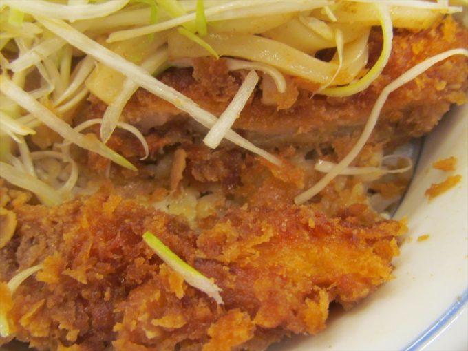 katsuya-nikuudon-chicken-cutlet-20201002-083