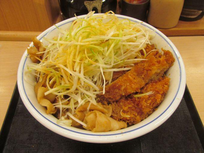 katsuya-nikuudon-chicken-cutlet-20201002-086