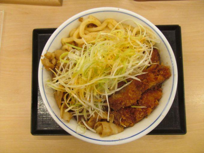 katsuya-nikuudon-chicken-cutlet-20201002-088