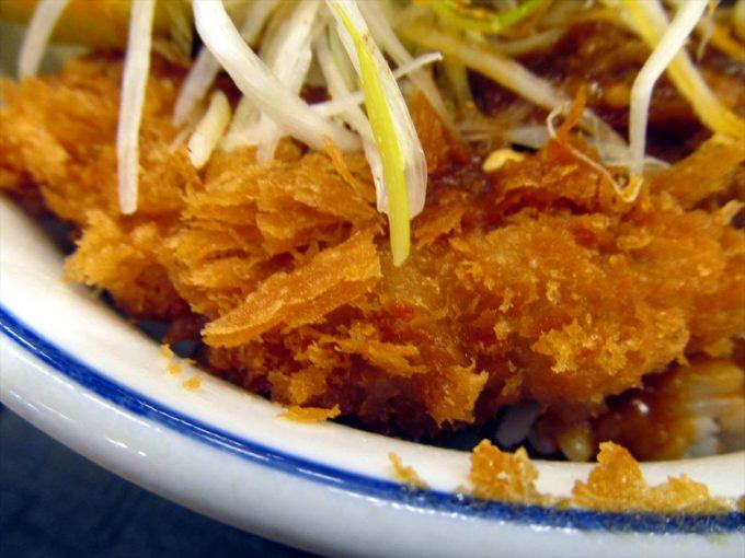 katsuya-goma-dandan-chicken-cutlet-20210108-048