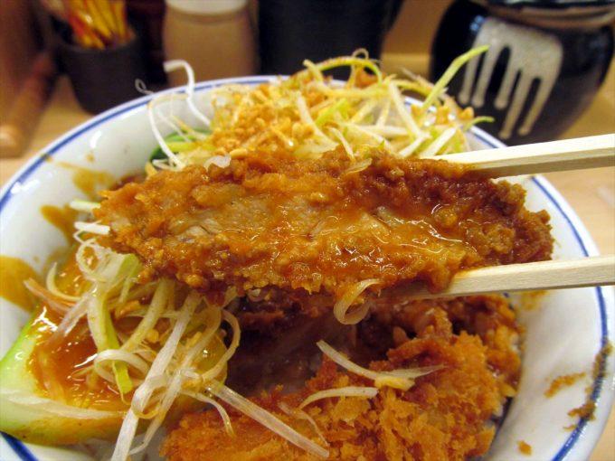 katsuya-goma-dandan-chicken-cutlet-20210108-064