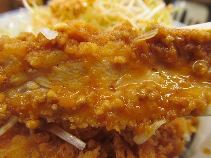 katsuya-goma-dandan-chicken-cutlet-20210108-066