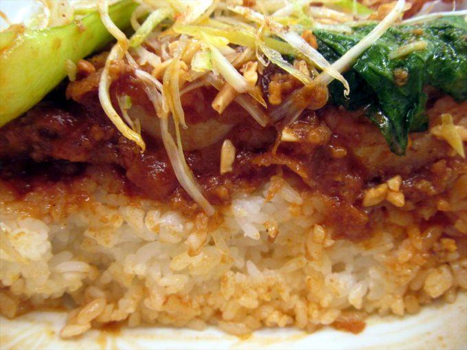 katsuya-goma-dandan-chicken-cutlet-20210108-074