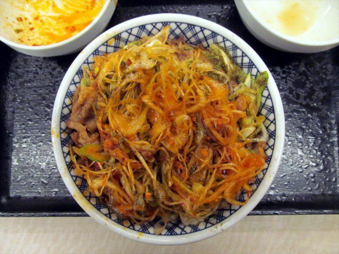 yoshinoya-negi-rayu-sahsho-20210213-065