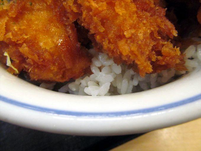 katsuya-tarekatsu-and-karaage-20210319-056